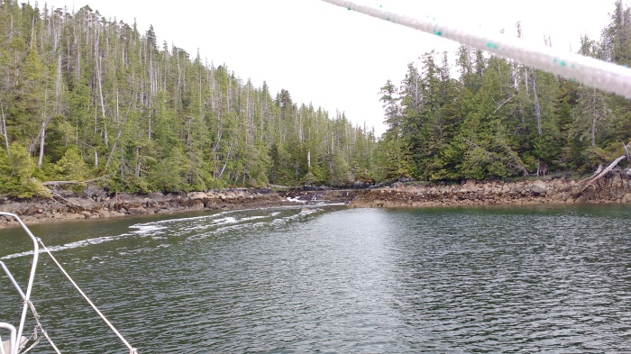 Tidal Waterfall in Kent Inlet - Princess Royal Island.Photo Ray Penson