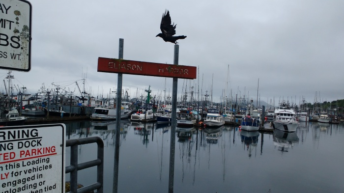 A wet morning in Sitka harbour. Photo Ray Penson