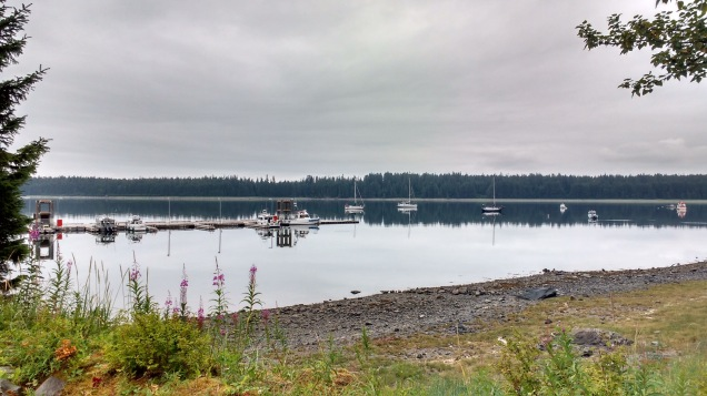 Calm Morning in Bartlett Cove. photo Ray Penson.