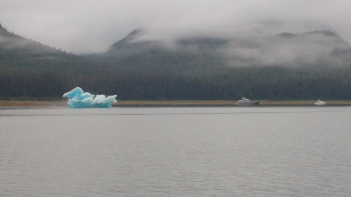Large Ice Duck protecting Tracy Arm Anchorage. Photo Ray Penson