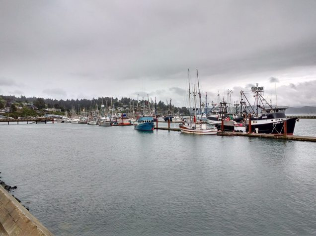 Fishing boat harbour Newport Oregon. Photo Ray Penson
