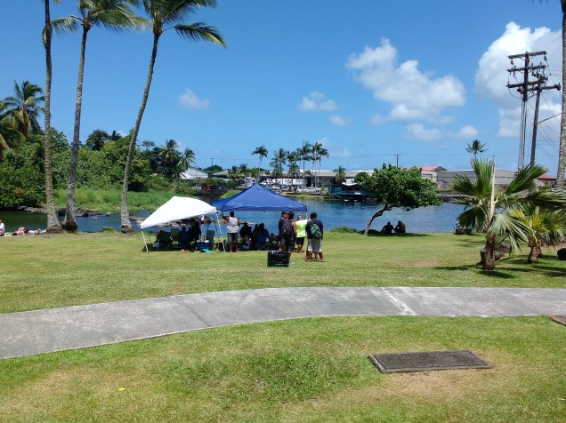 Hanging out in Reeds Bay, Hilo Photo Ray Penson