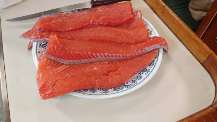 Fresh Salmon. Photo Ray Penson. Sailing Yacht Truce