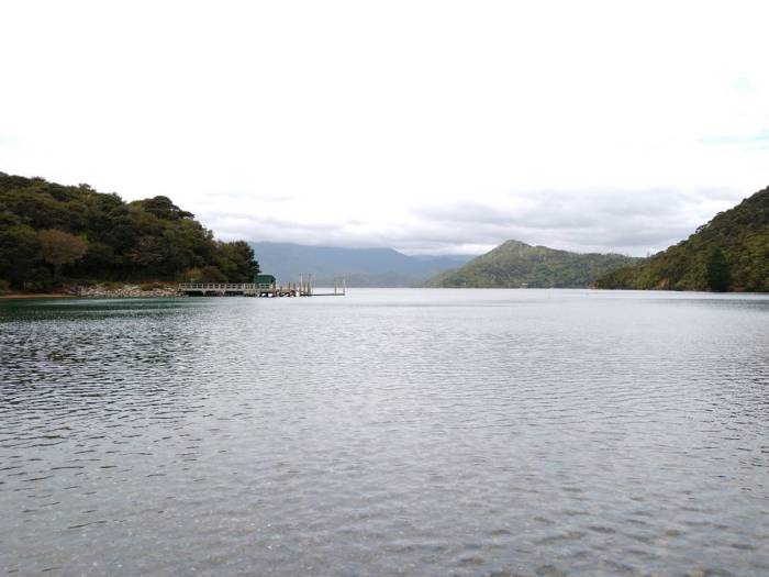 Torea Bay on Queen Charlotte Sound. Photo Ray Penson