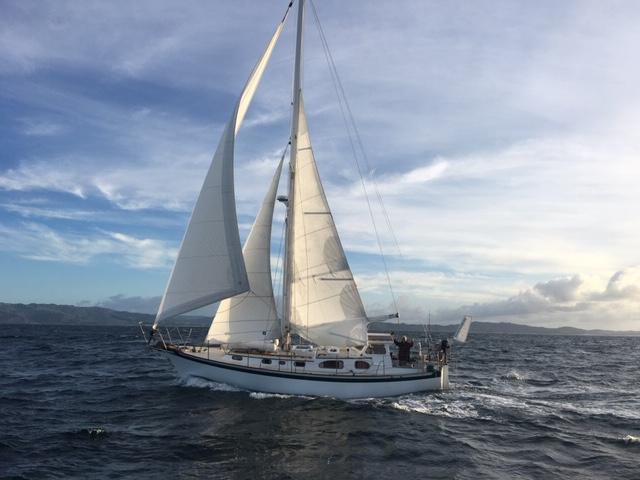 Truce Sailing, off Cape Rodney
