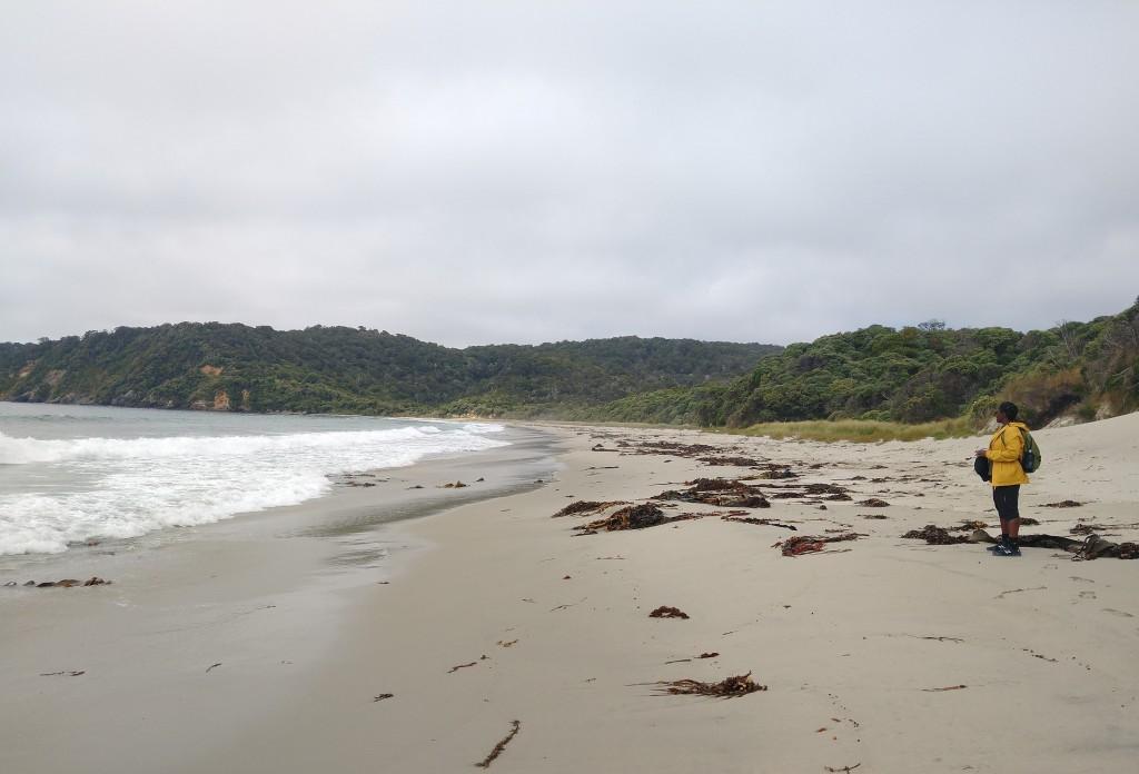 Ocean Beach. Photo Ray Penson