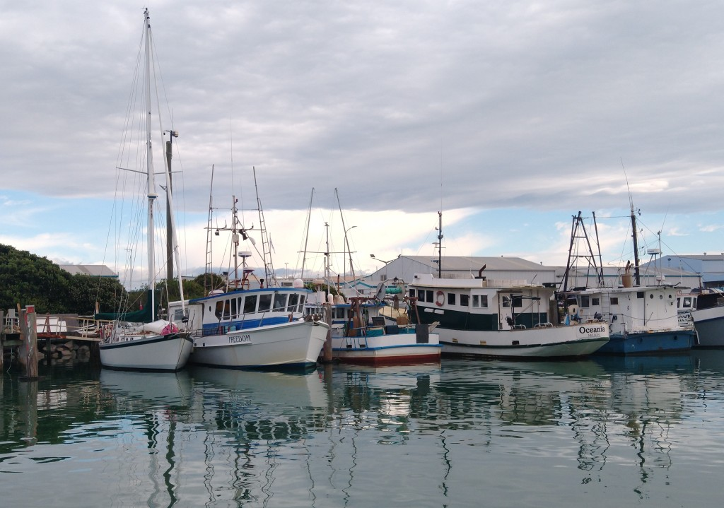 A Rose amongst Thorns, Truce moored in Fishing Pens. Photo Ray Penson