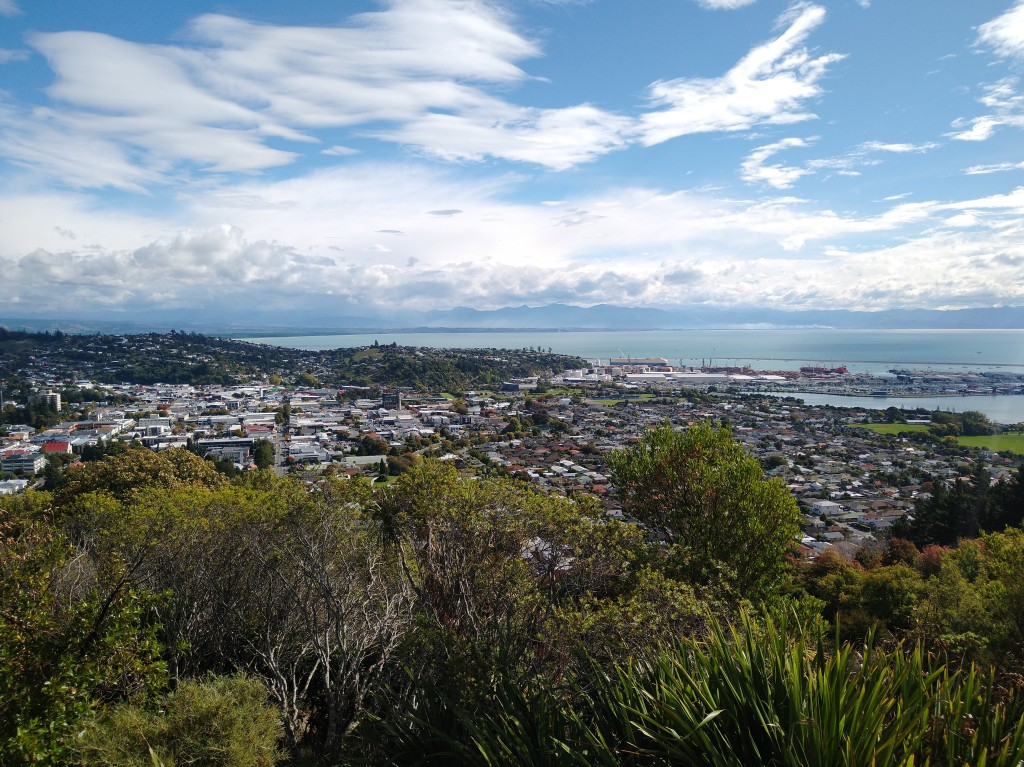 Nelson City and Port from Botanical Hill. Photo Ray Penson