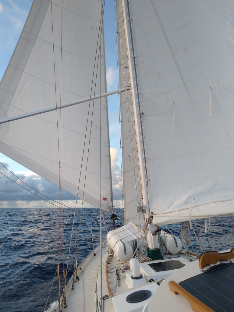 Almost full sail making good time up the West Coast. Photo Ray Penson