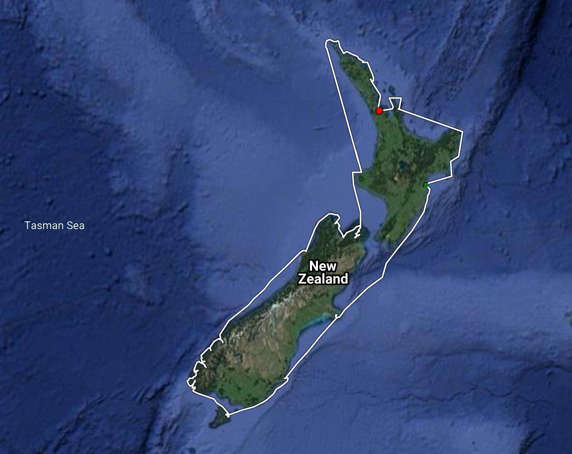 New Zealand Cruise 2021